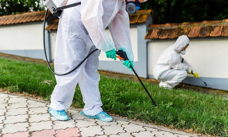 مكافحة-الحشرات-البلدية-new
